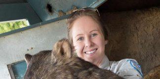 Patrick le Wombat