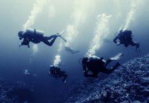 plongée australie