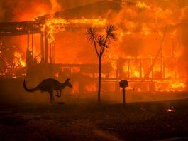 Incendie en Australie