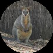 Illustration du profil de ptifred04