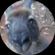 Illustration du profil de mayelou