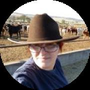 Illustration du profil de vana