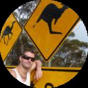 Illustration du profil de tortue102