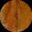 Illustration du profil de sebaustralia