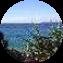 Illustration du profil de amphitrite