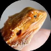 Illustration du profil de aurelie15-06