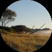 Illustration du profil de wenael