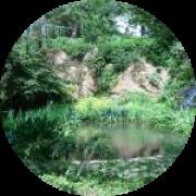 Illustration du profil de Leena972