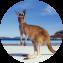 Illustration du profil de LeKmeleon