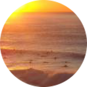 Illustration du profil de Lea Celerier