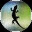 Illustration du profil de julien07