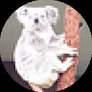 Illustration du profil de evisu31