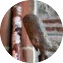 Illustration du profil de teetoo