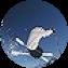 Illustration du profil de josianoz