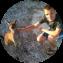 Illustration du profil de sydneysider